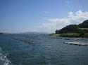 京都府景観資産の牡蠣棚